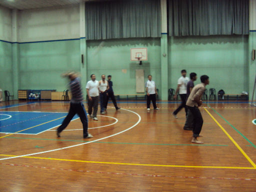 volleyball ultima 2011
